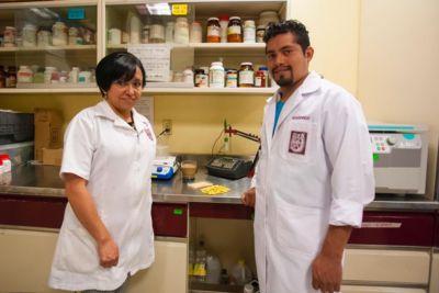 Crean investigadores del IPN bebida de haba que reduce colesterol y glucosa